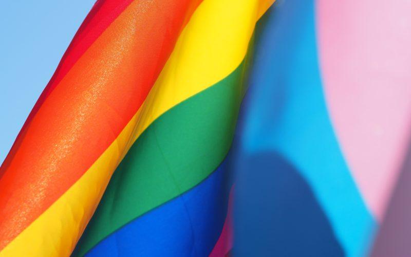 Foto de Bandeira Trans e LGBT na mesma tela como se fossem uma só